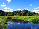 The River Pravaya Lesnaya – click to enlarge in the new window